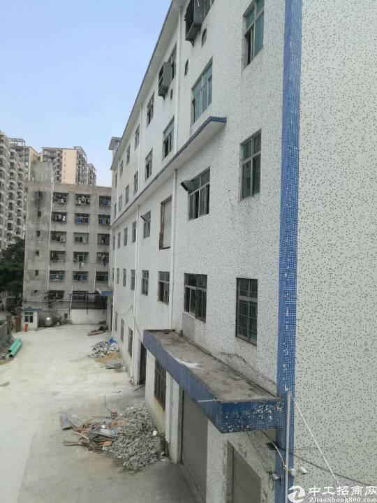 西乡固戍朱坳工业区独门独院1-5层6500平米大小可分租