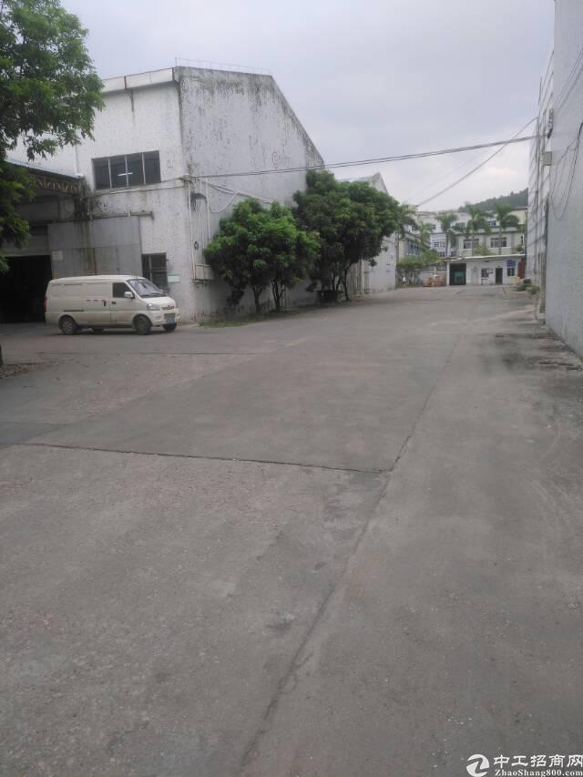 平湖清平高速出口专业物流仓库一楼1200平米急租-图6