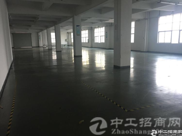 茶山空出精装修厂房2000方,水电齐全,搬进去可生产-图2