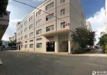 坪山新区4200平独栋厂房图片1