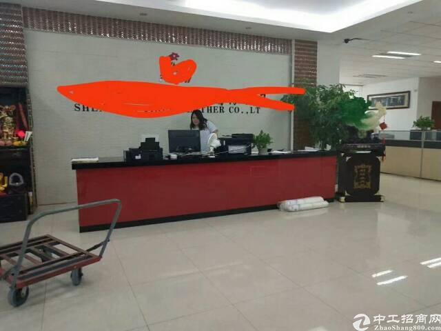 平湖原房东电商产业园三楼2600平米带豪华装修出租可分租急-图7