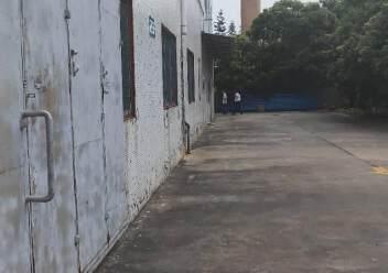 新出平湖标准物流仓库1200平方带卸货平台出租图片3