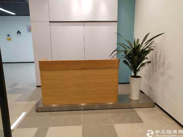 深圳龙华新区豪华写字楼出租图片4