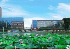龙泉航空职业技术学院旁600平米精装修办公室出租