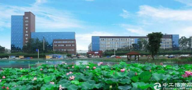 龙泉航空职业技术学院旁600平米精装修办公室出租图片1