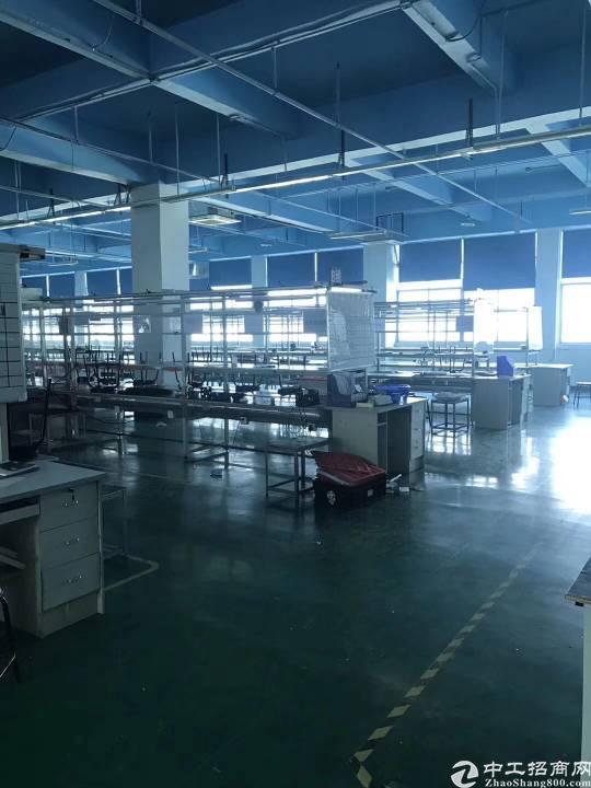 公明镇新出楼上精装厂房1980平米