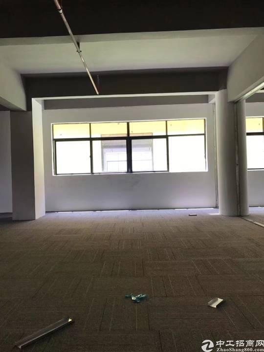 布吉木棉湾地铁站新出两万平厂房写字楼