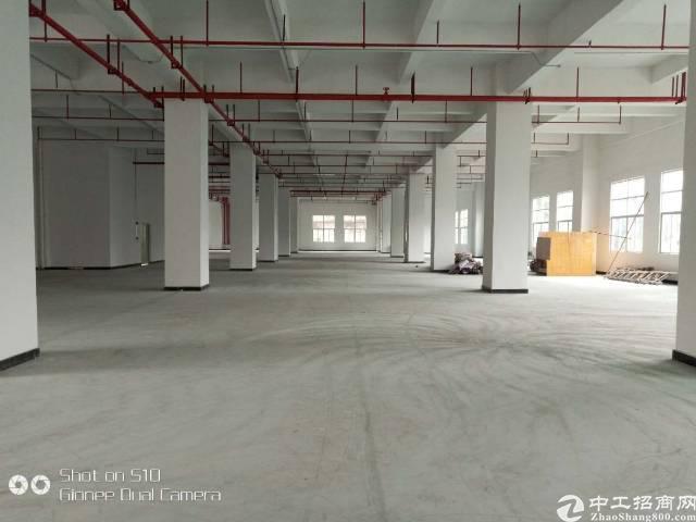 虎门镇南栅五区全新独院厂房出租