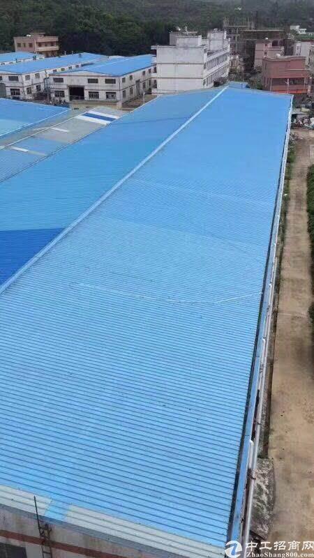 报盘:惠州市惠阳区约场占地19000平方钢结构厂房出售