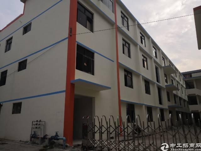 平湖富民工业区独院厂房出租