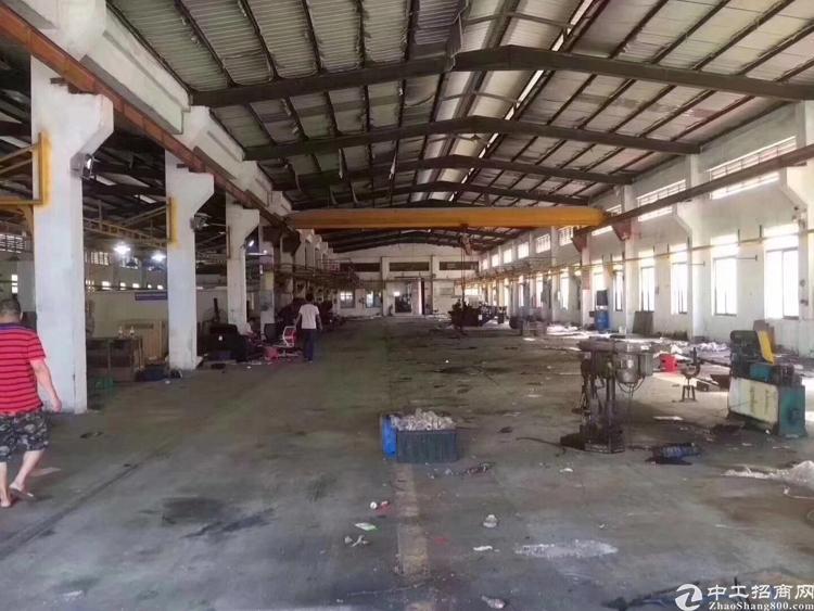 清溪新出原房东钢构厂房