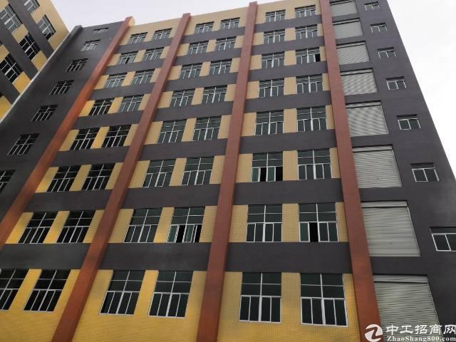 长安乌沙新出全新多层厂房招租大小可分