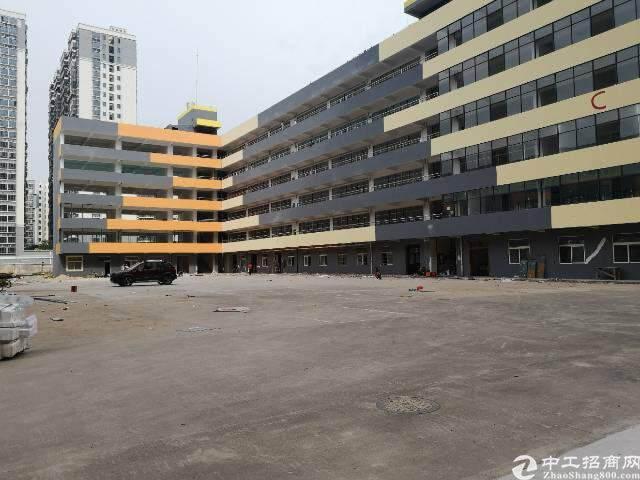 观澜新出福民观澜大道办公室电子商务贸易60平方起租图片3