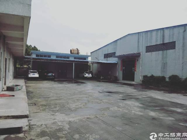 陈江镇新空出单一层独院出租