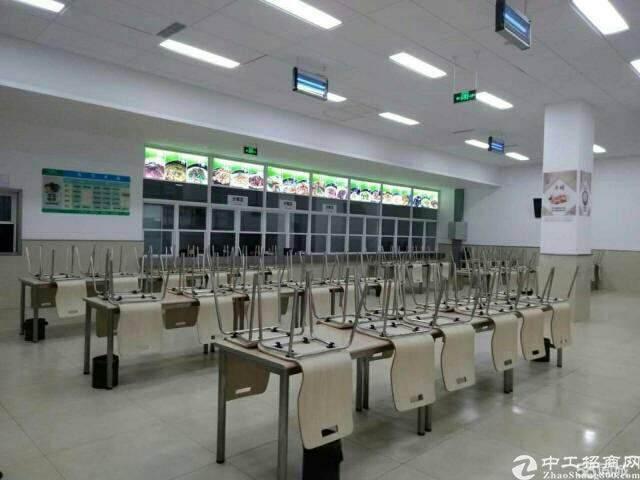 龙泉航空职业技术学院旁600平米精装修办公室出租图片2