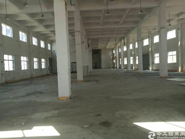 东深路旁禾坑村原房东独门独院标准厂房,