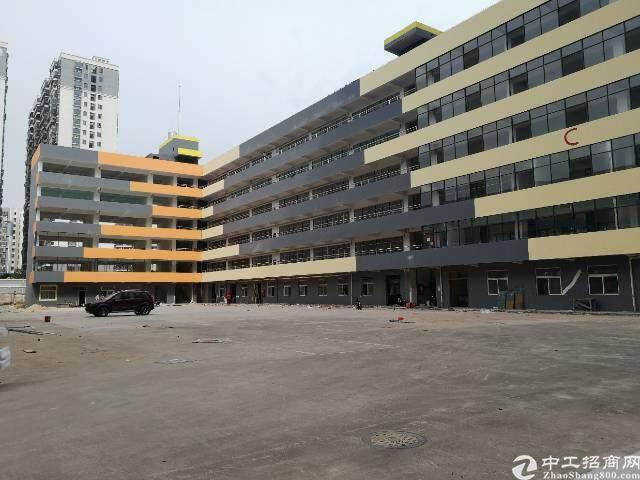 观澜新出福民观澜大道办公室电子商务贸易60平方起租图片1
