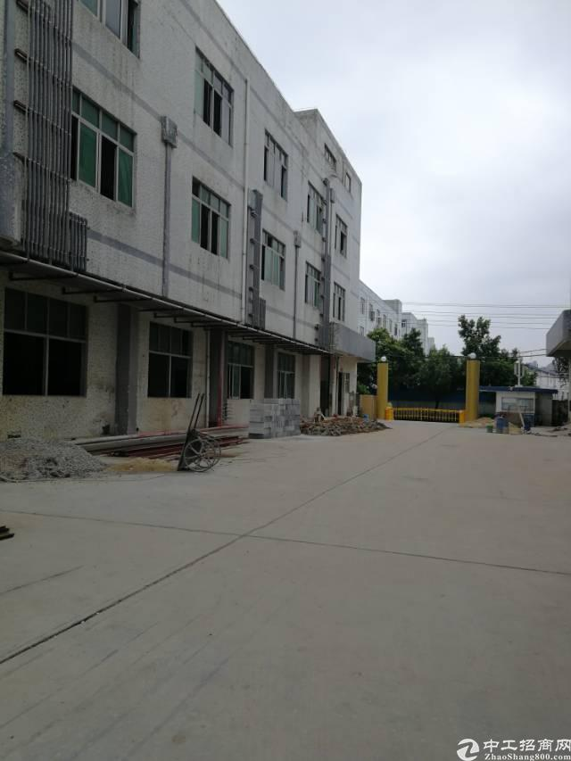 平湖鹅公岭标准厂房1楼400平出租