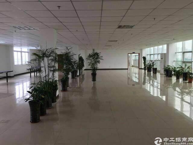 龙泉航空职业技术学院旁600平米精装修办公室出租图片6