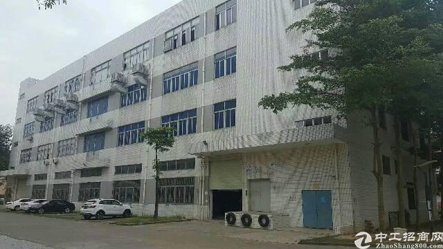 平湖海吉星市场食品配送仓库2000平米一楼出租可分租急