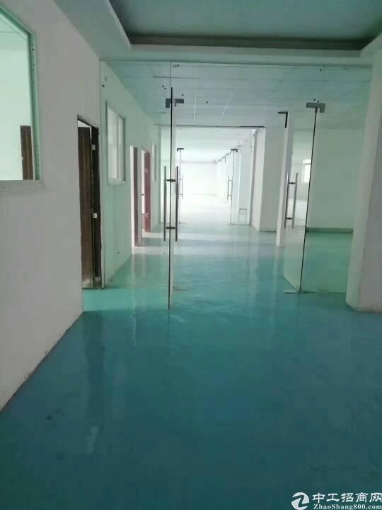 平湖原房东厂房三楼1000平米带装修出租可分租!