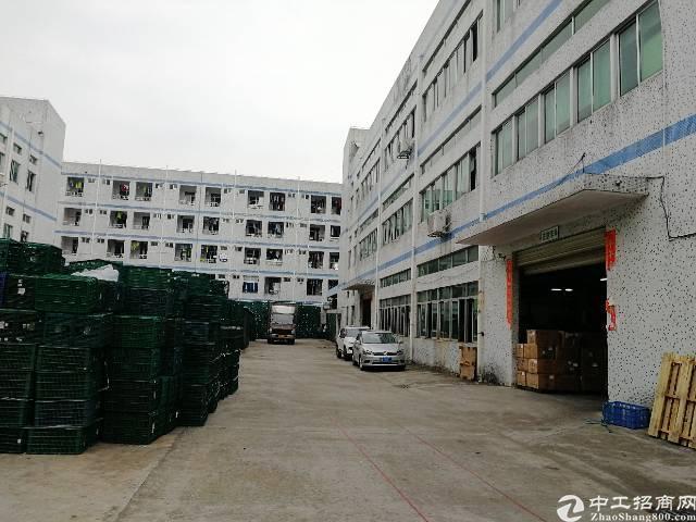 公明镇北环路旁原房东实际面积精装厂房1400平米现在转租-图5
