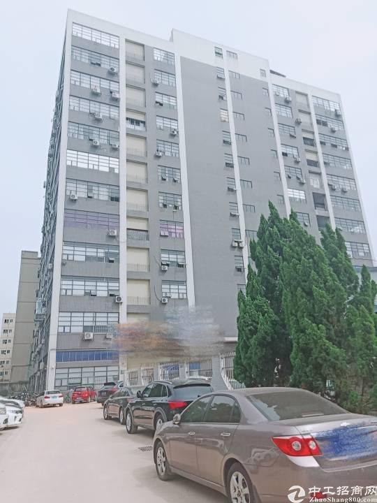 公明李松蓢炮台路边上楼上900平方带精装修办公室