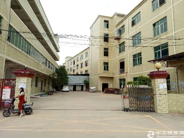 坑梓龙田街道新出标准厂房一楼1100平米