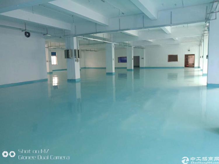 福永新出独门独院1-3层6600平米厂房出租
