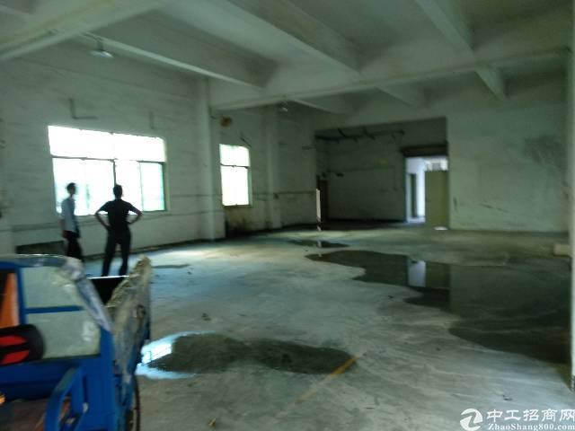 公明新出一楼400小整层厂房