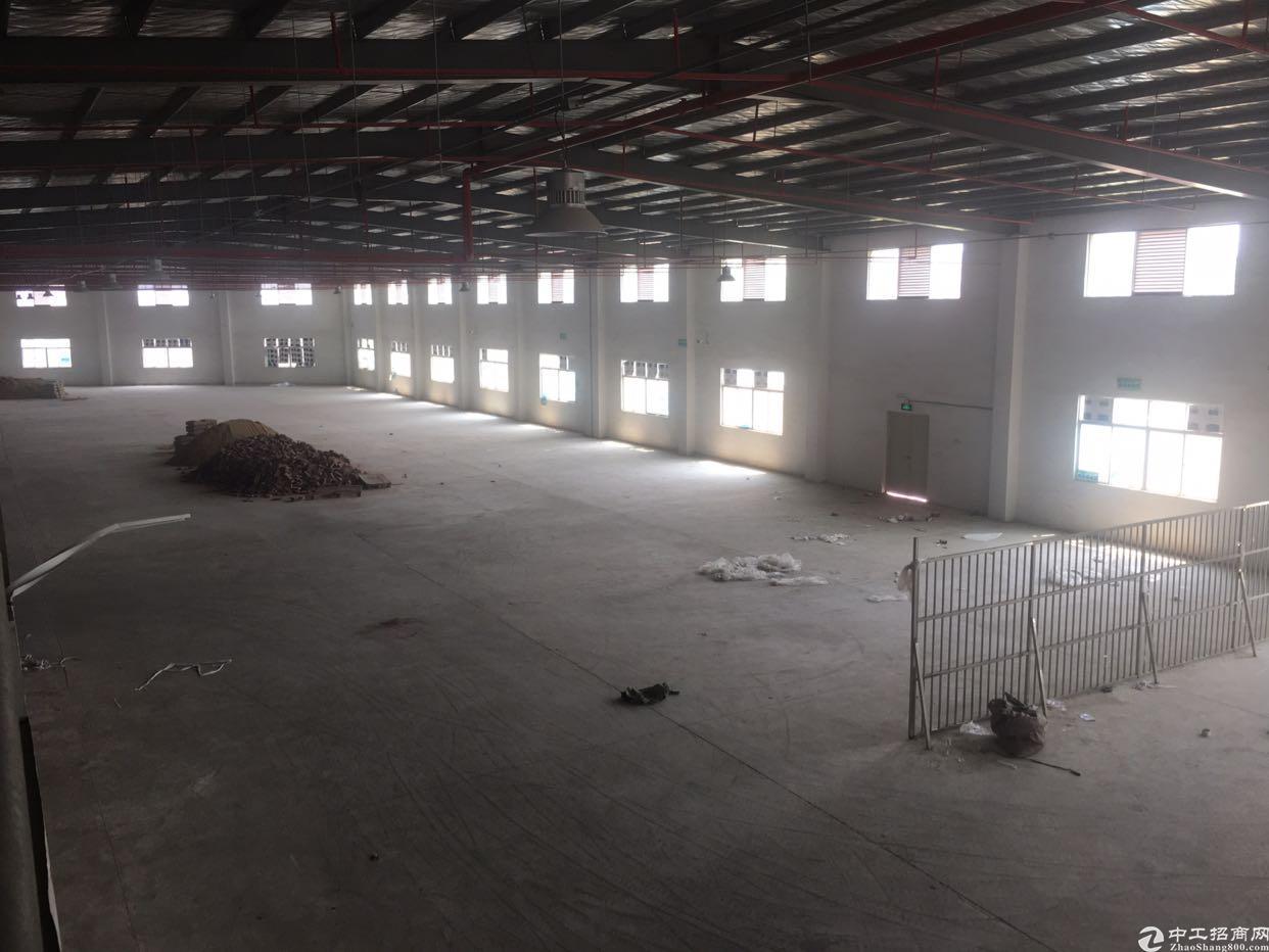 惠州市惠东县白花镇红本全新钢构厂房