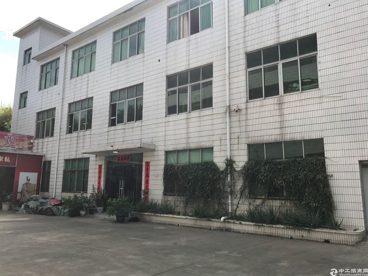观澜松元独院厂房2800平方火爆招租中