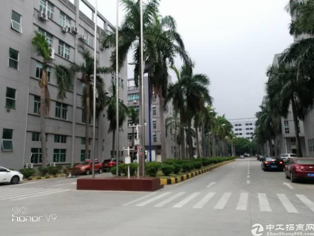 公明原房东楼上3000平米带豪华装修办公室前台厂房出租