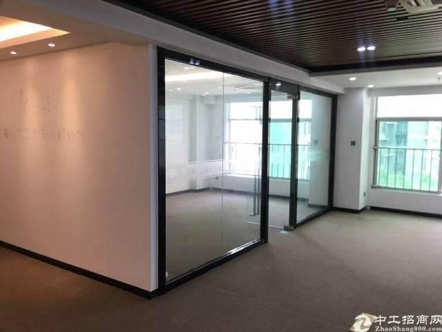 出租龙华清湖地铁口171平豪华精装修图片6