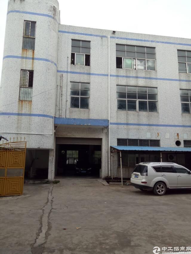 坑梓老坑工业区新区二楼1050平米红本厂房