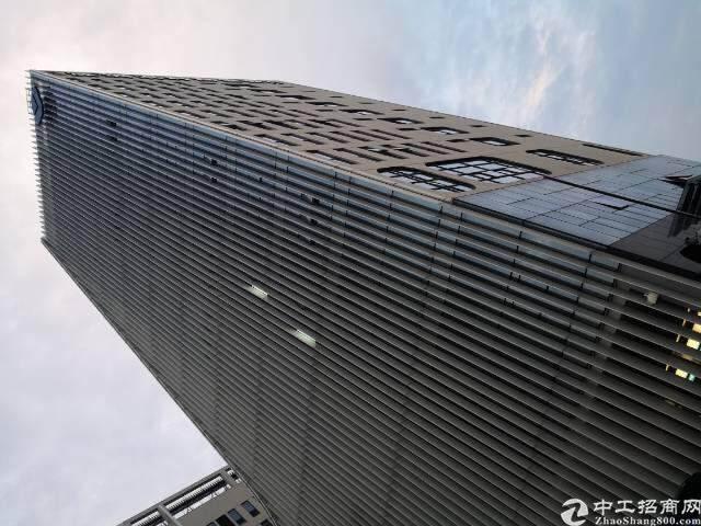 出租坪山大道边上精装修办公室368平图片4