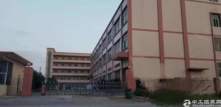 横沥原房东独院厂房6000平方米出租