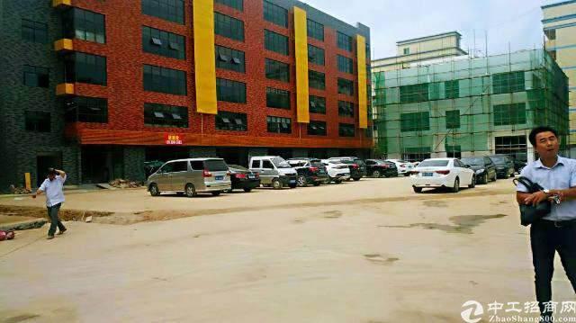 龙华汽车站后原房东全新独院创意园区直租图片2