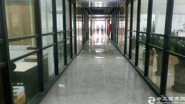 龙华汽车站后原房东全新独院创意园区直租图片4