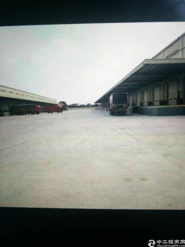 东莞大型标准物流仓招租