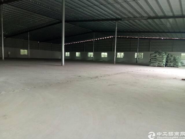 惠东白花全新钢构2500平便宜出租
