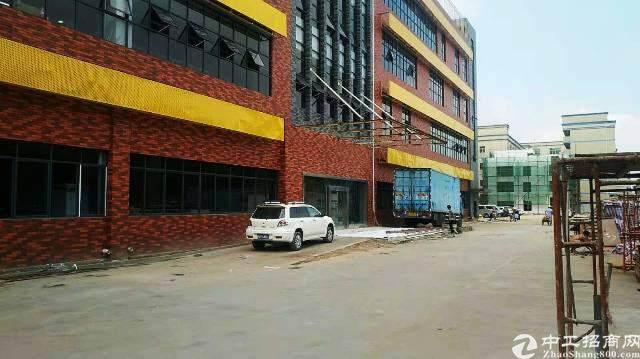 龙华汽车站后原房东全新独院创意园区直租图片6