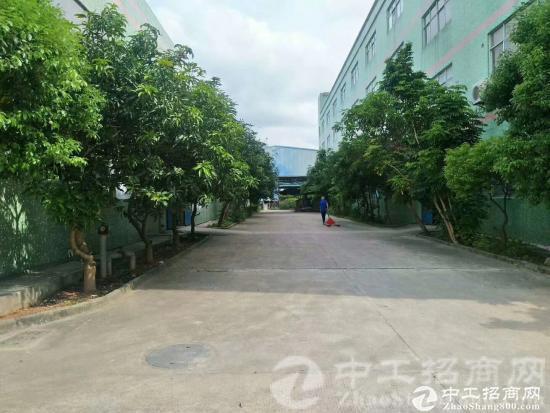 厚街镇涌口村现有原房东带红本独院厂房8600平米招租