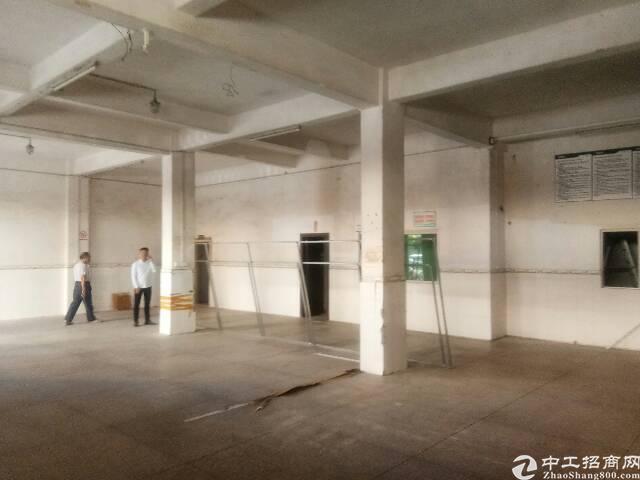 惠城区小金口独栋两层楼共900平,三厢电,交通方便,办公室带