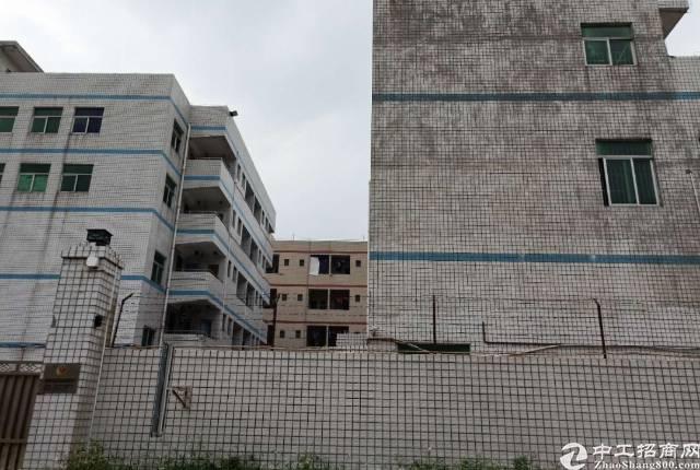 清溪真真的原房东标准厂房二栋带一栋宿舍整租
