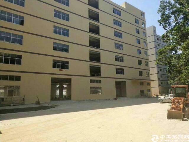 平湖全新厂房一楼3000平米出租可分租急急急