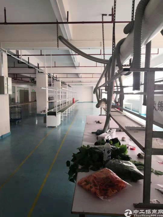 观澜环观中路新出楼上带装修厂房1200平米无转让费