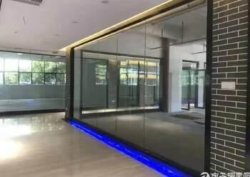 沙井东环路边全新精装修写字楼80平米起租图片2