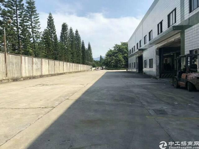 大朗新出一楼厂房5000平,八米高可办环评