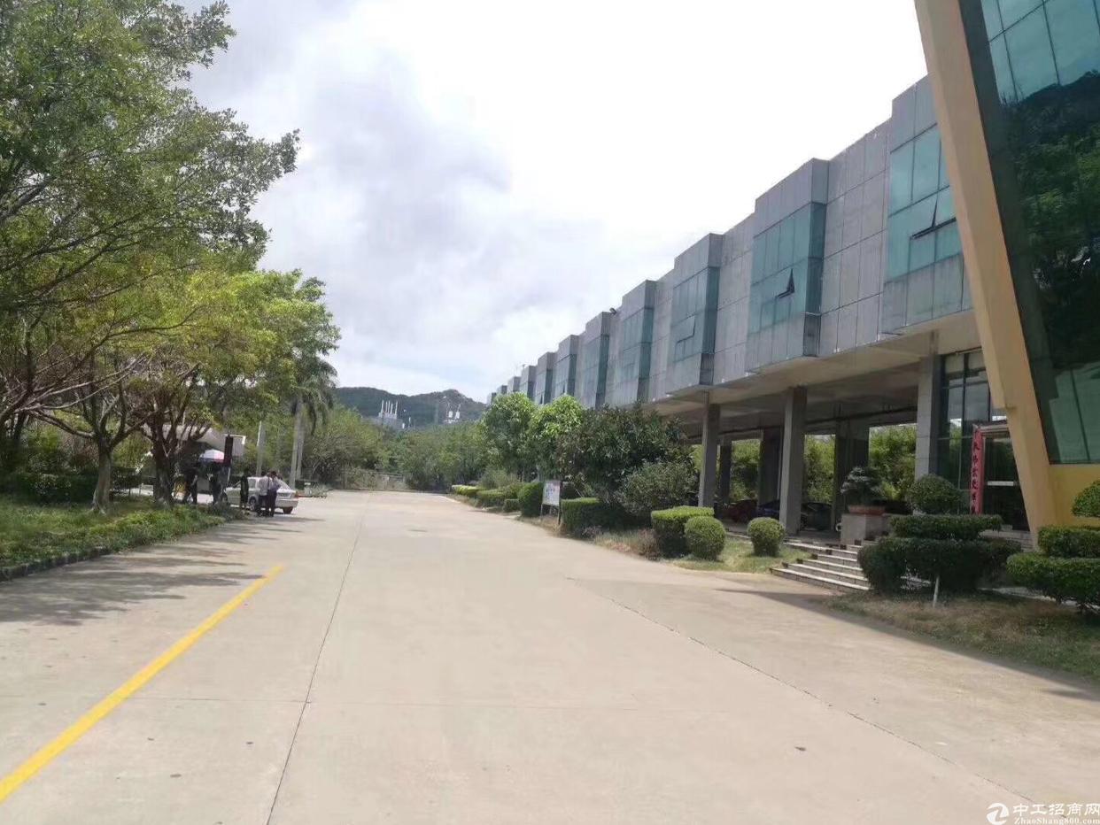 深圳沿海高速出口附近独院钢构厂房滴水8米4万平方可分租
